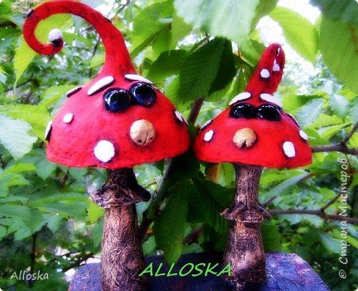 Всем жителям страны мастеров  доброго дня! Сразу хочу признаться, что грибы с глазками нашла у Liana Murtazina (Lianamur) в контакте, слежу за творчеством этого мастера, так впечатлилась этим произведением, что срочно стала изучать технику папье-маше.Ох, оказывается и не легкое это дело папье-маше.... Спасибо мастеру за вдохновение!!!!  Здесь без лака)  фото 1