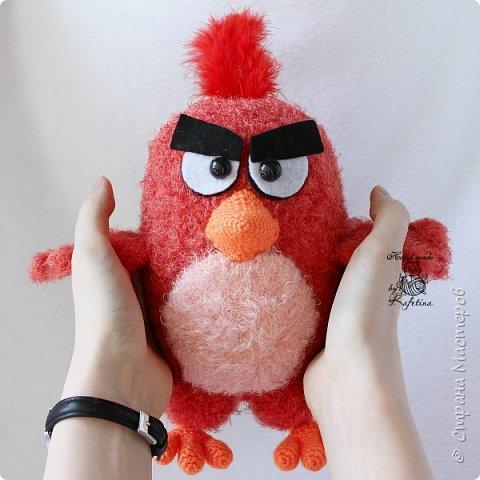 Злая-злая птичка
