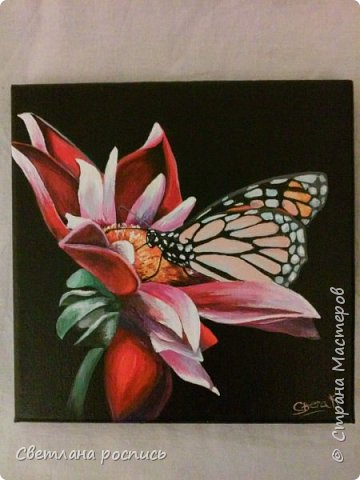 """""""бабочка на цветке"""""""