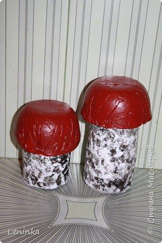 Вот такие грибочки у меня получились по мастер классу (http://samayamk.ru/podelki-iz-gipsa/sadovye-gribochki-iz-gipsa.html) я просто добавила улитку и листики которые слепила из пластики.  фото 3