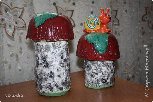 Вот такие грибочки у меня получились по мастер классу (http://samayamk.ru/podelki-iz-gipsa/sadovye-gribochki-iz-gipsa.html) я просто добавила улитку и листики которые слепила из пластики.  фото 1