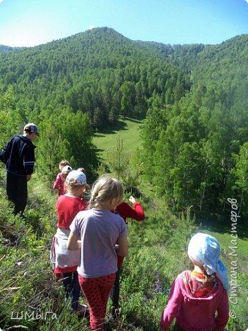 Первый воскресный день лета порадовал солнечным теплом. Выпускники первого класса, захватив с собой старших и младших братишек-сестренок, решили провести его на природе. Отправляемся в окрестности нашего села - лог Арбанак. фото 13