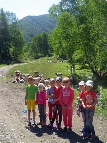 Первый воскресный день лета порадовал солнечным теплом. Выпускники первого класса, захватив с собой старших и младших братишек-сестренок, решили провести его на природе. Отправляемся в окрестности нашего села - лог Арбанак. фото 25