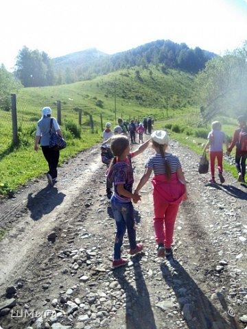 Первый воскресный день лета порадовал солнечным теплом. Выпускники первого класса, захватив с собой старших и младших братишек-сестренок, решили провести его на природе. Отправляемся в окрестности нашего села - лог Арбанак. фото 3