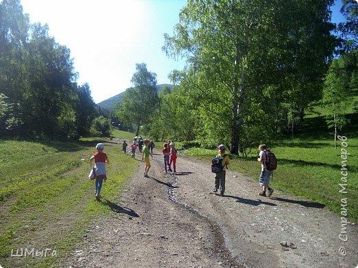 Первый воскресный день лета порадовал солнечным теплом. Выпускники первого класса, захватив с собой старших и младших братишек-сестренок, решили провести его на природе. Отправляемся в окрестности нашего села - лог Арбанак. фото 5