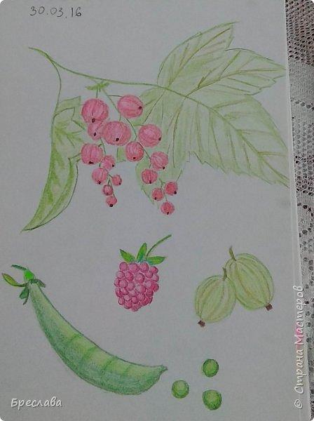 Мои художества. Сейчас тренируюсь мало.   1. Пробую объём. Ошибки вижу фото 2