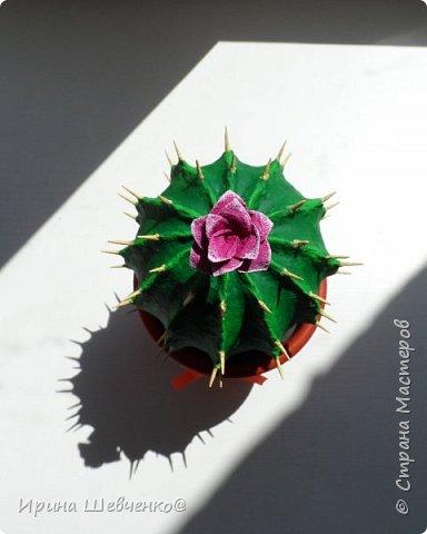 А у меня зацвел кактус из папье-маше))) фото 4