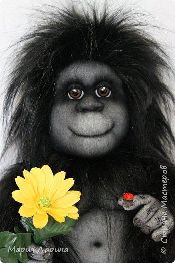 Всем большой привет ! Вот такой горилл у меня на днях родился ))) Очень хотелось сделать чёрную обезьянку ) пересмотрела фото очень много и мой выбор остановился на гориллах ! Очень надеюсь, что мой Гарри Вам понравится ))) фото 3