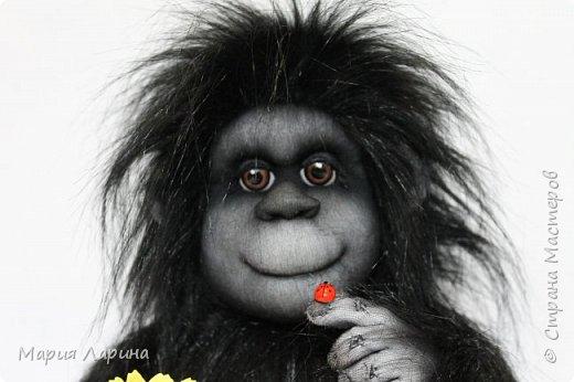 Всем большой привет ! Вот такой горилл у меня на днях родился ))) Очень хотелось сделать чёрную обезьянку ) пересмотрела фото очень много и мой выбор остановился на гориллах ! Очень надеюсь, что мой Гарри Вам понравится ))) фото 2
