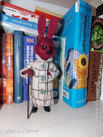 Мне очень понравились игрушки в пальто - Кати Козуненко, решила сделать свою зверушку в одежке, вот такой престарелый, почему то бордовый крол получился: фото 1