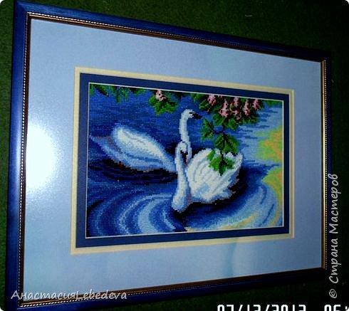 Белые лебеди  Нет любви нежнее и вернее, Чем у диких белых лебедей. Нет сердец ранимей, горячее, Не найти любви похожей у людей.  Пара лебедей все время вместе, Не изменят, не уйдут, не предадут, В белом оба, будто – бы жених с невестой, Счастье лебединое хранят и берегут. фото 2