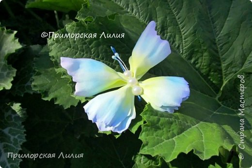 Бабочка из фоамирана. Украшение на лето))) фото 2