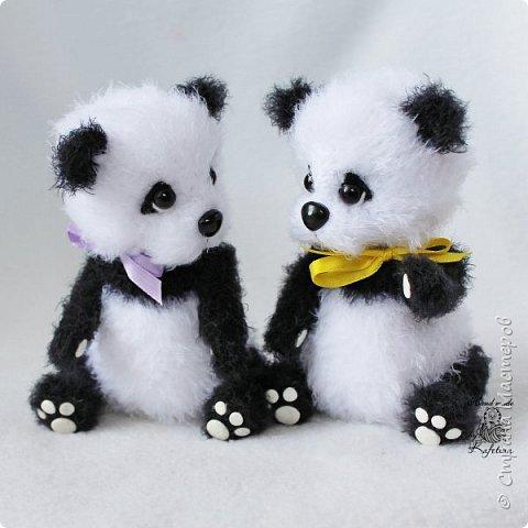 Панда раз, Панда два :) фото 2