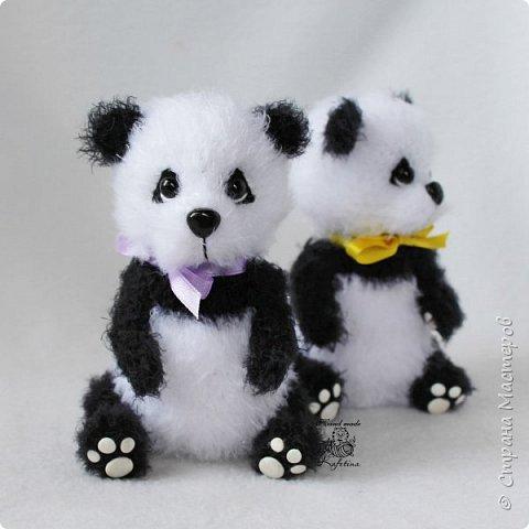 Панда раз, Панда два :) фото 3