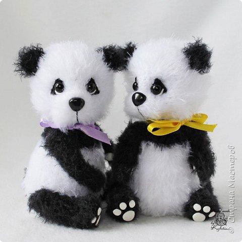 Панда раз, Панда два :) фото 1