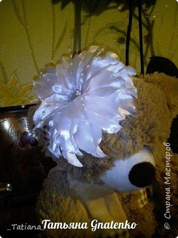 Белые лилии фото 3