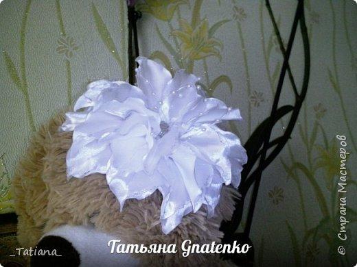 Белые лилии фото 5
