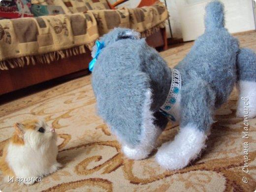 Здравствуйте! Родилась у меня собачка-щенок.  Связана в онлайне Kirkira - Кирочки на форуме амигуруми. Пряжа - КХТ, крючок 1,5 Klover, наполнитель - холофайбер. Ростиком 22 см, в длину  от носа до кончика хвоста - 26 см. Голова на шплинте, лапки на ниточном креплении - все части тела двигаются.Спасибо огромное Кирочке за эту маленькую прелесть! фото 9