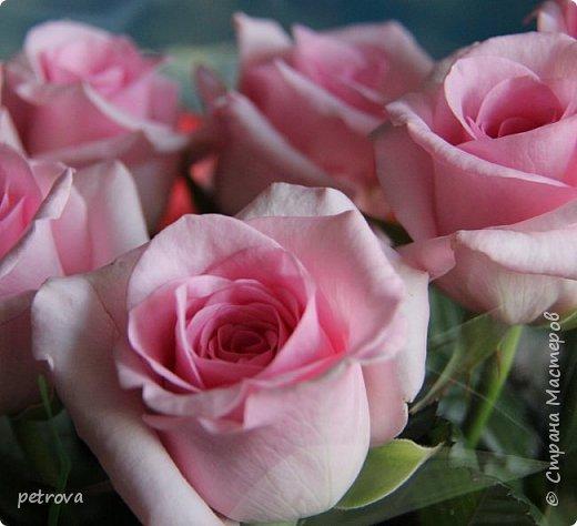 Дорогие мастерицы - друзья Страны Мастеров - с праздником - с Международным днем друзей!!! Вот такой замечательный праздник!!! А еще лучше, когда свой день рождения можно отметить с друзьями в древнем, замечательном городе - Чернигов! И получать море позитива - цветы, подарки и подарочки, новые впечатления.  Вот эти цветы от семьи Сластион - нашей мастерицы -  Isla, какие они нежные, вкуснопахнущие и долгостоящие!!! фото 48