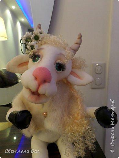 Коза сделана к 2015г фото 1