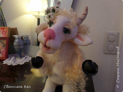 Коза сделана к 2015г фото 2