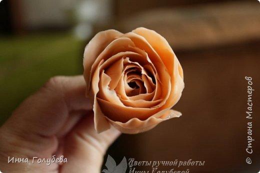 Девочки,сегодня лепила вот такую розу с живого образца и отсняла поностью сборку и тонировку лепестков,чашелистников и стебля.Хотела завтра выложить,но решила сегодня,а то решили малых повести в зоопарк) .И воскресенье буду занята. Так что выкладываю) фото 22