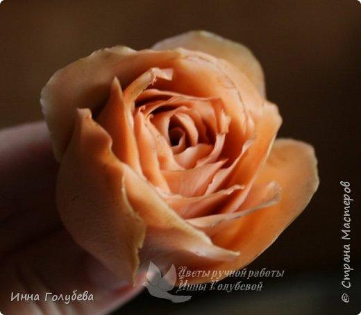 Девочки,сегодня лепила вот такую розу с живого образца и отсняла поностью сборку и тонировку лепестков,чашелистников и стебля.Хотела завтра выложить,но решила сегодня,а то решили малых повести в зоопарк) .И воскресенье буду занята. Так что выкладываю) фото 32
