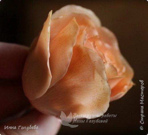 Девочки,сегодня лепила вот такую розу с живого образца и отсняла поностью сборку и тонировку лепестков,чашелистников и стебля.Хотела завтра выложить,но решила сегодня,а то решили малых повести в зоопарк) .И воскресенье буду занята. Так что выкладываю) фото 23