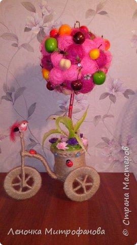 Фруктовый сад на велосипеде фото 1