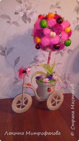 Фруктовый сад на велосипеде фото 2