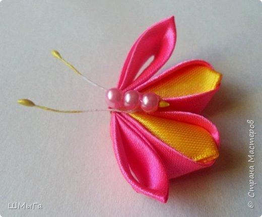 Пришла пора цветов и бабочек. фото 5