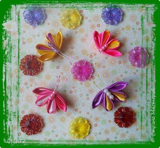 Пришла пора цветов и бабочек. фото 6