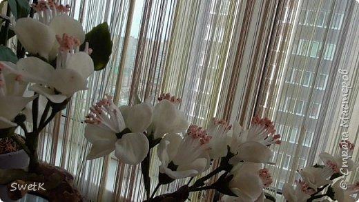 """Добрый день СМ...  По завершению работы возникает вопрос """" Показать и поблагодарить мастеров или Скрыть и не позориться????"""" ..Выставляю не все  но эту решила показать т.к  она - последний штрих сокрытия неровностей.......параллельно с лепкой своей стены (((http://stranamasterov.ru/node/1030034.......увидела Сакуру у замечательной мастерицы Марины Сергеевны    http://stranamasterov.ru/node/939602 .... она меня очаровала, и я решила - мне она нужна..... между лепкой кирпичей сооружала ветку...ветки, проволока и как раз остатки от обрезков лотков пошли на папье маше......(((( получился конечно уЖас....но я ж его сотворила.....надо было все из проволоки делать...хоть изогнуть можно б было как надо..... Дальше больше...ветка веткой, а еще ж и цветы нужны... и только сейчас увидела что МК по их лепке есть...но увы уже поздно... ХФ впервые удался ( хотя после высыхания и не гнется, но и не трескается, не ломается....и главное не выступает ни чего на поверхность ( вазелина не было, сварганила без него чем таки довольна....но ....этих НО оооочень много..... фото 4"""