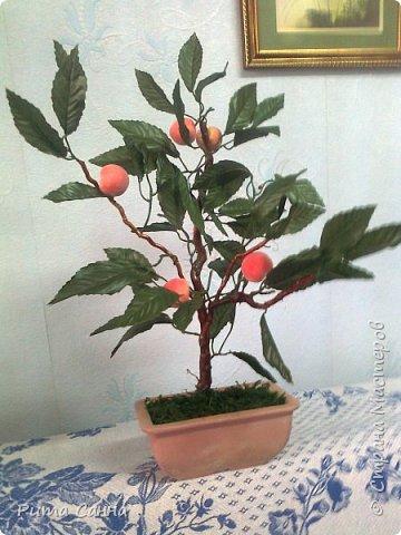 ПЕРСИК - корень , листики из ткани и персики с пенопласта ( из магазина ) фото 2