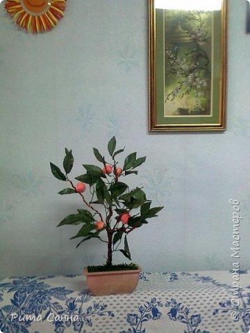 ПЕРСИК - корень , листики из ткани и персики с пенопласта ( из магазина ) фото 1