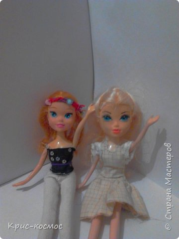 Здравствуй, страна мастеров! Я почти не рассказывала о Белле. И так, в этом блоге м поподробнее рассмотрим то,что я шила для Беллы (можно просто Белки). Все что на фото самодельное. На первом фото голубое платье. Его я только сегодня сшила. фото 7