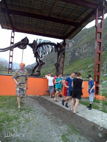 В Чемальском районе Республики Алтай появилась новая достопримечательность – «Палеопарк». Он находится в селе Эликманар и на данный момент является самым большим музеем естественной истории в Сибири по количеству палеонтологических экспонатов. фото 10