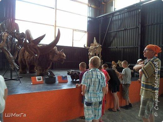 В Чемальском районе Республики Алтай появилась новая достопримечательность – «Палеопарк». Он находится в селе Эликманар и на данный момент является самым большим музеем естественной истории в Сибири по количеству палеонтологических экспонатов. фото 11