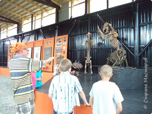 В Чемальском районе Республики Алтай появилась новая достопримечательность – «Палеопарк». Он находится в селе Эликманар и на данный момент является самым большим музеем естественной истории в Сибири по количеству палеонтологических экспонатов. фото 13