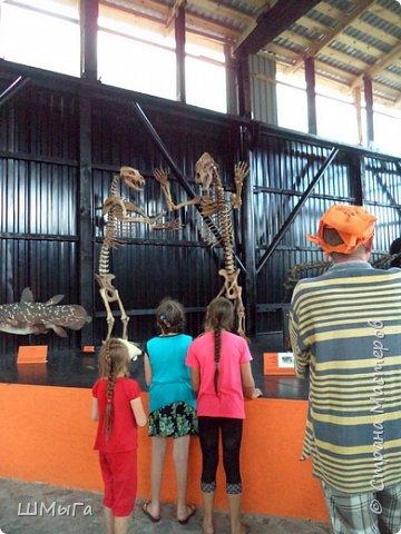В Чемальском районе Республики Алтай появилась новая достопримечательность – «Палеопарк». Он находится в селе Эликманар и на данный момент является самым большим музеем естественной истории в Сибири по количеству палеонтологических экспонатов. фото 15