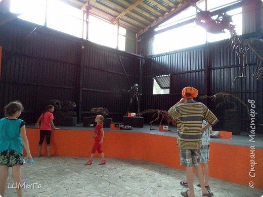 В Чемальском районе Республики Алтай появилась новая достопримечательность – «Палеопарк». Он находится в селе Эликманар и на данный момент является самым большим музеем естественной истории в Сибири по количеству палеонтологических экспонатов. фото 17