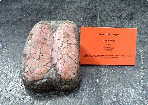 В Чемальском районе Республики Алтай появилась новая достопримечательность – «Палеопарк». Он находится в селе Эликманар и на данный момент является самым большим музеем естественной истории в Сибири по количеству палеонтологических экспонатов. фото 19