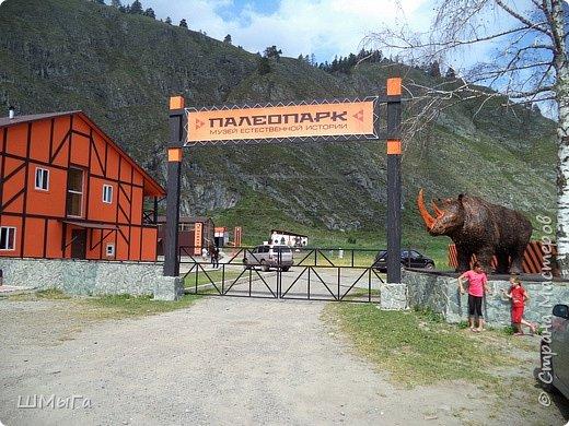 В Чемальском районе Республики Алтай появилась новая достопримечательность – «Палеопарк». Он находится в селе Эликманар и на данный момент является самым большим музеем естественной истории в Сибири по количеству палеонтологических экспонатов. фото 1