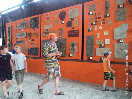 В Чемальском районе Республики Алтай появилась новая достопримечательность – «Палеопарк». Он находится в селе Эликманар и на данный момент является самым большим музеем естественной истории в Сибири по количеству палеонтологических экспонатов. фото 28
