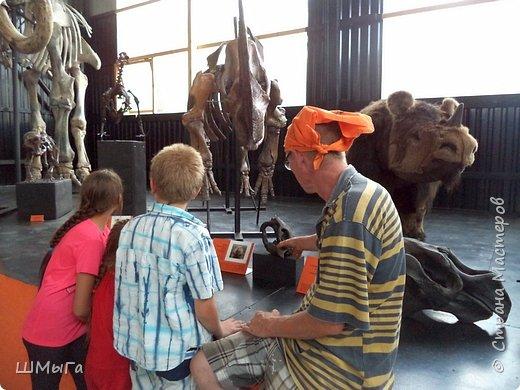 В Чемальском районе Республики Алтай появилась новая достопримечательность – «Палеопарк». Он находится в селе Эликманар и на данный момент является самым большим музеем естественной истории в Сибири по количеству палеонтологических экспонатов. фото 30