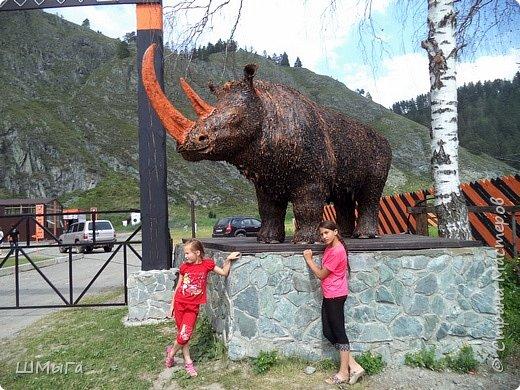 В Чемальском районе Республики Алтай появилась новая достопримечательность – «Палеопарк». Он находится в селе Эликманар и на данный момент является самым большим музеем естественной истории в Сибири по количеству палеонтологических экспонатов. фото 3