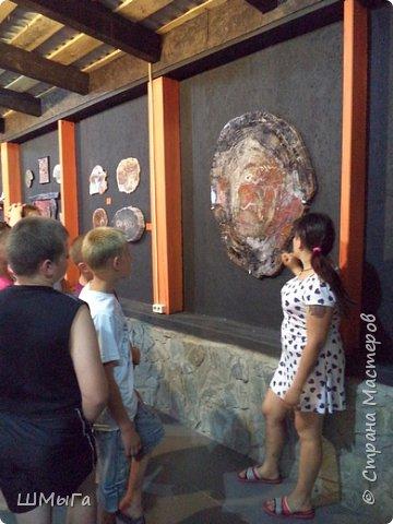 В Чемальском районе Республики Алтай появилась новая достопримечательность – «Палеопарк». Он находится в селе Эликманар и на данный момент является самым большим музеем естественной истории в Сибири по количеству палеонтологических экспонатов. фото 5