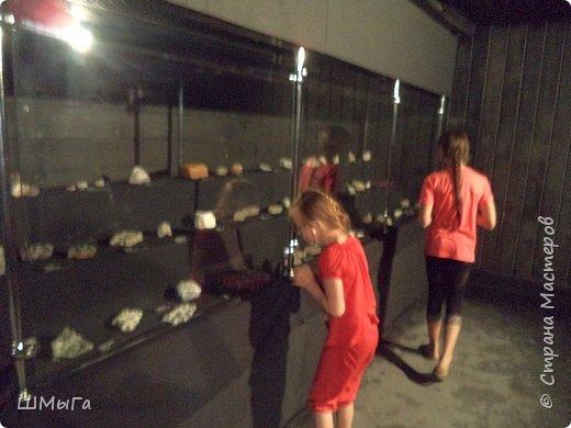 В Чемальском районе Республики Алтай появилась новая достопримечательность – «Палеопарк». Он находится в селе Эликманар и на данный момент является самым большим музеем естественной истории в Сибири по количеству палеонтологических экспонатов. фото 7