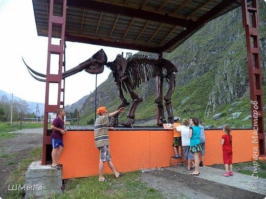 В Чемальском районе Республики Алтай появилась новая достопримечательность – «Палеопарк». Он находится в селе Эликманар и на данный момент является самым большим музеем естественной истории в Сибири по количеству палеонтологических экспонатов. фото 9