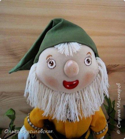 Привет всем в СМ!  Еще одного героя из сказок закончила я шить вчера. Это гномик! Очень я люблю этих милых лесных человечков! В Германии они пользуются особым уважением: во многих дворах, на садовых участках можно увидеть каменные, глиняные, деревянные фигурки гномов. Шила гномика для подарка, но, когда он был готов, поняла, что не смогу с ним расстаться. Оставлю его у себя. Пусть он приносит радость, достаток, удачу в мой дом! фото 2